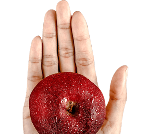 hand holding fresh apple pm3 agency blog